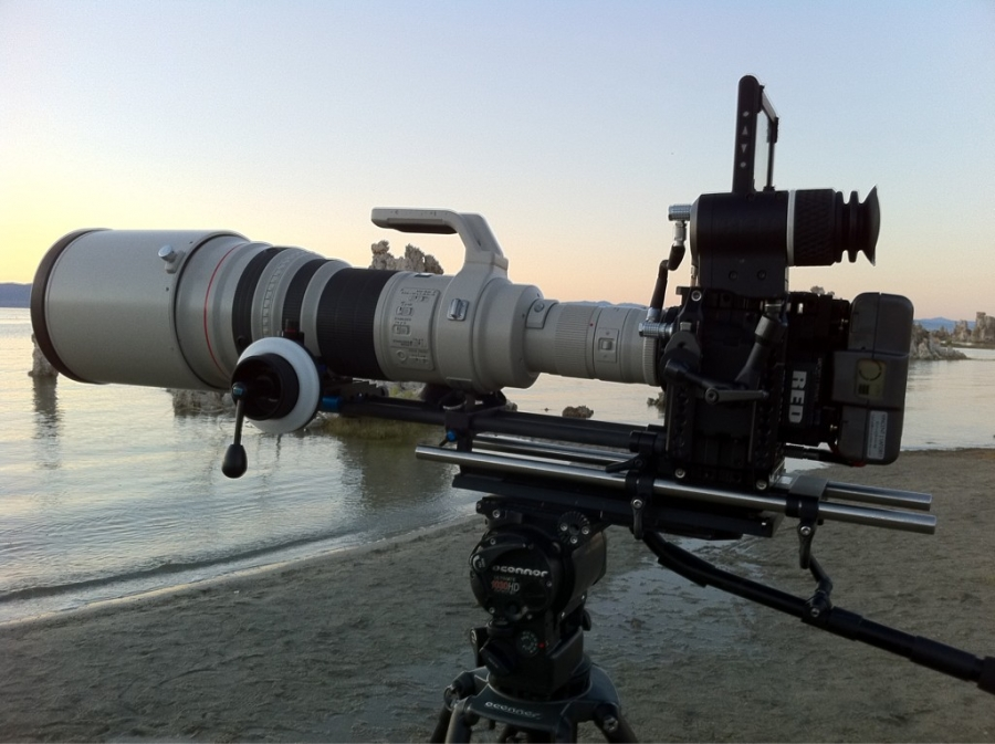 Canon 600mm on RED EPIC on ProPic